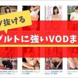 【AVが定額で見放題!】安心安全なアダルト動画サービスはココしかねーッ!!