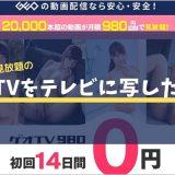 ゲオTV980のアダルト動画をテレビで見る方法
