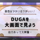 大画面DUGA