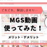 MGSメリット・デメリット