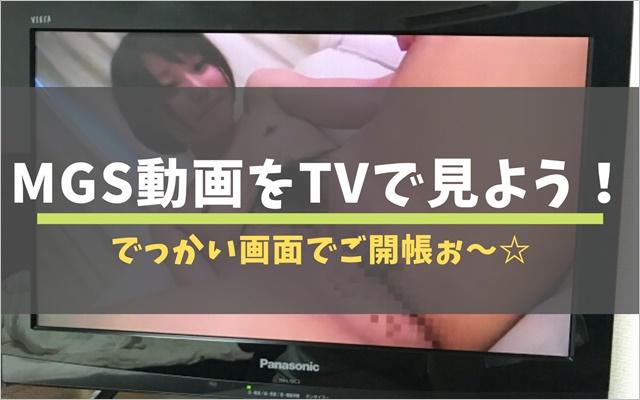 MGS動画をTVで見よう!