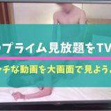 SODプライム見放題をTVで!エッチな動画を大画面で見ようよ☆